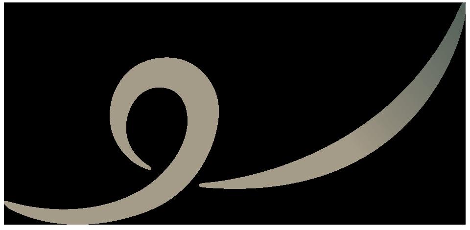 conversus-icon